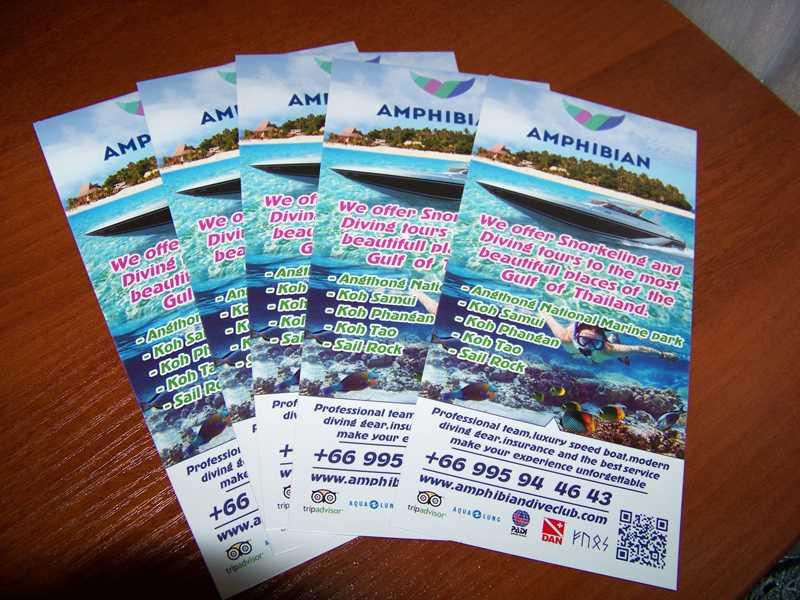 Amphibian - флаер Diving tours