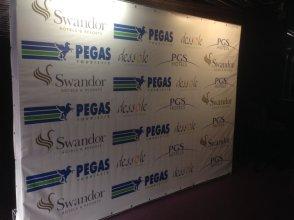 Бренд-волл на вечеринку - Swandor-PEGAS Touristik