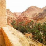 Несподівано зустріти оазис, посеред пустелі – це вражає 😉